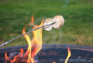 roasting-marshmallows-15947990