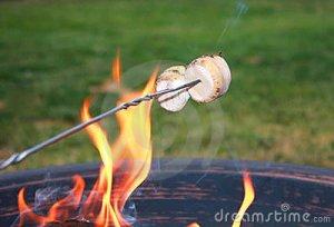 roasting-marshmallows-15947990