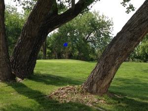 The 17th Tee (see the blue flag?)