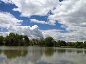 Pond Clouds